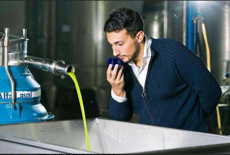 production huile d'olive bio