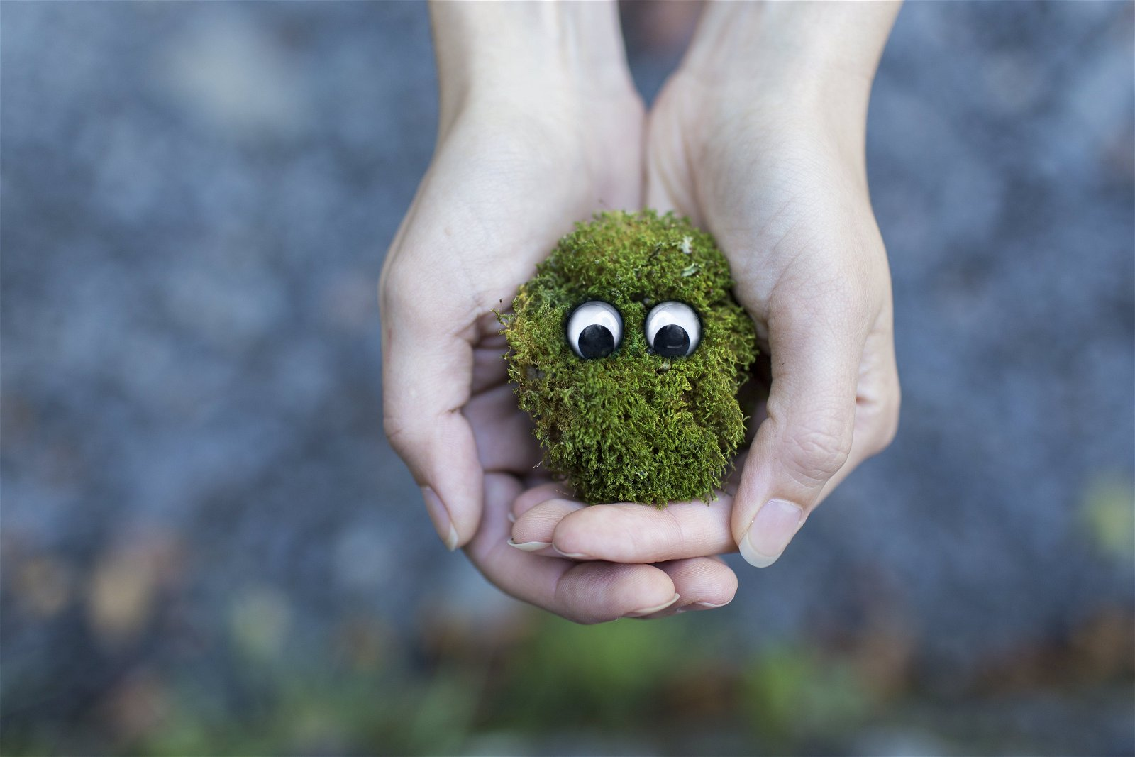 préservation des sols en bio