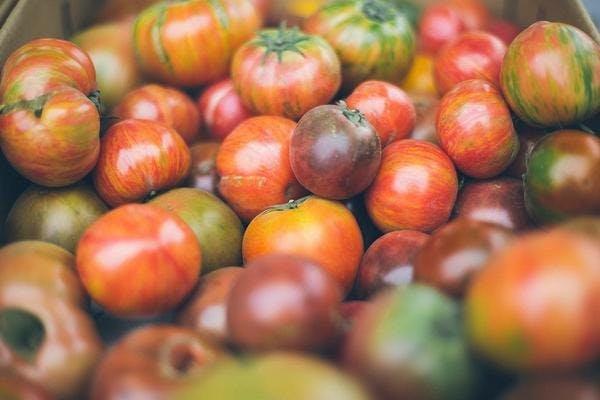 Fruits locaux de saison